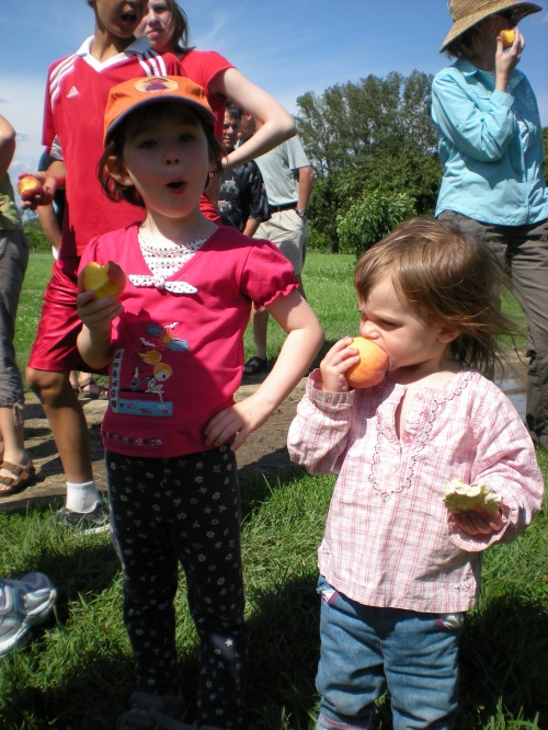 Enjoying the peaches at Thiessen farms.